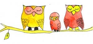 Bonne année 2013! dans illustrations/aquarelle/encre 3chouettes-300x142